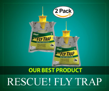 Best Fly Trap [Top 6 fro 2019] Traps & Baits To get Rid of Flies